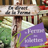 Mes produits à Toulouse